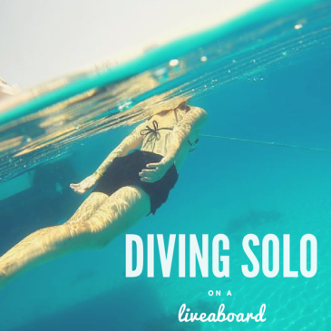 Why Liveaboards are great for solo divers