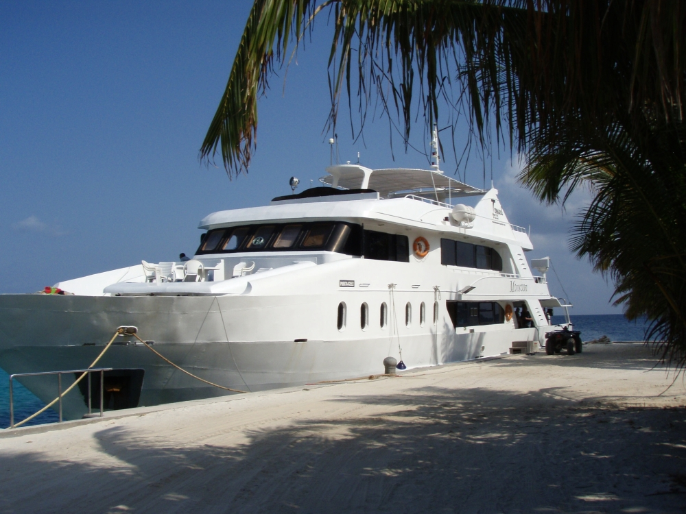 Travelling and Diving solo? Why Liveaboards are awesome