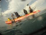 Sardine Run Day 5: Into theMillpond