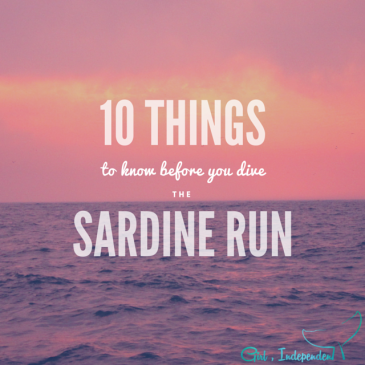 10 things you should know about the Sardine Run