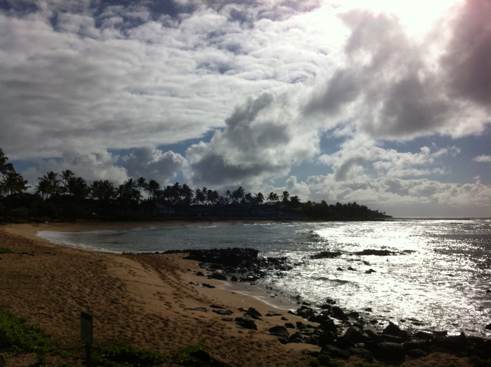 Photo Gallery - Beautiful Landscapes of Kauai (5/6)
