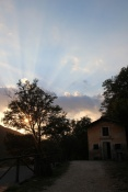 Sunset Pian di fiume tree